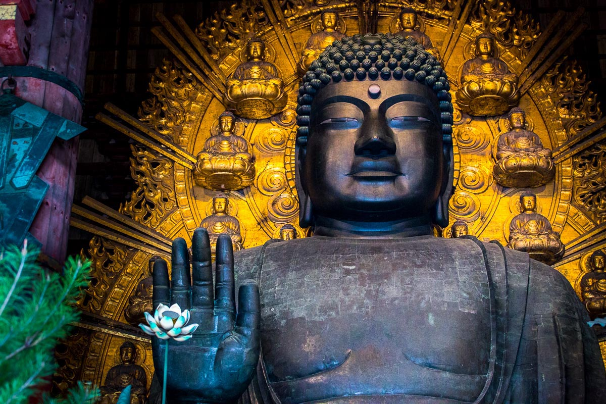 travel_japanbuddha