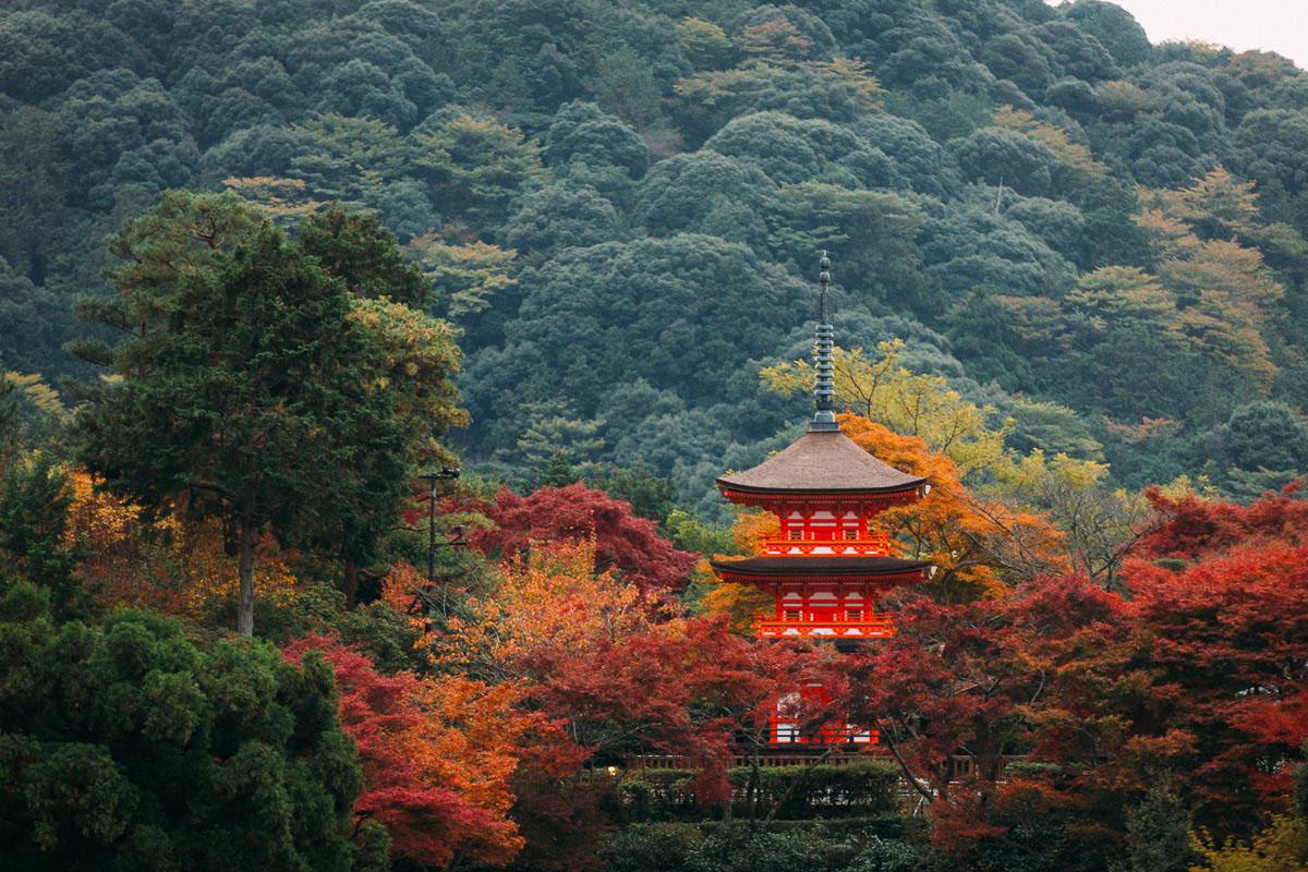 travel_japantemple